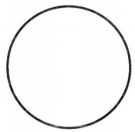Envision Math Common Core 1st Grade Answers Topic 15 Equal Shares of Circles and Rectangles 62