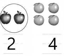 Envision-Math-Common-Core-1st-Grade-Answers-Topic-6-Represent-and-Interpret-Data-3-1