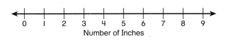 Envision Math Common Core 2nd Grade Answer Key Topic 15 Graphs and Data 11