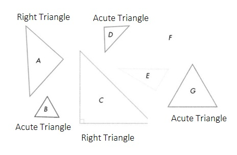 Envision-Math-Common-Core-4th-Grade-Answers-Key-Topic-16-Lines-Angles-and-Shapes-Lesson-16-2-Classify-Triangles-Problem-Solve-&-Share