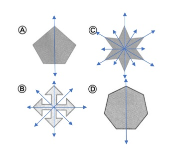 Envision-Math-Common-Core-4th-Grade-Answers-Key-Topic-16-Lines-Angles-and-Shapes-Lesson-16-4-Line-Symmetry-Problem-Solving-Question-20