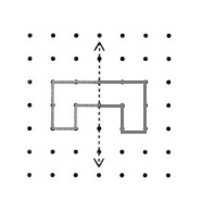 Envision-Math-Common-Core-4th-Grade-Answers-Key-Topic-16-Lines-Angles-and-Shapes-Lesson-16-5-Draw-Shapes-with-Line-Symmetry-Guided-Practice-Question-3
