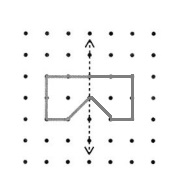 Envision-Math-Common-Core-4th-Grade-Answers-Key-Topic-16-Lines-Angles-and-Shapes-Lesson-16-5-Draw-Shapes-with-Line-Symmetry-Guided-Practice-Question-4