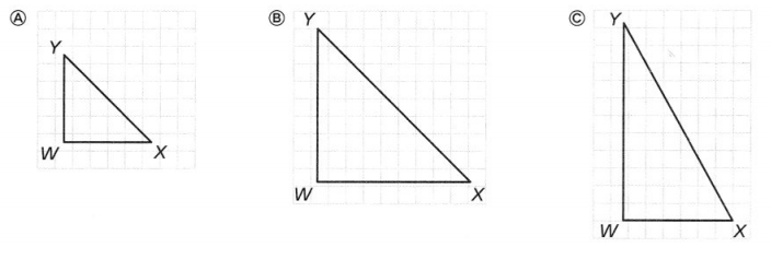 Envision Math Common Core 7th Grade Answers Topic 8 Solve Problems Involving Geometry 33