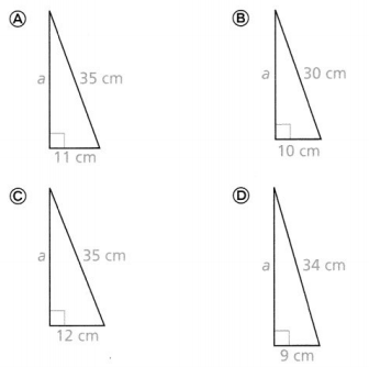Envision Math Common Core 8th Grade Answer Key Topic 7 Understand And Apply The Pythagorean Theorem 38